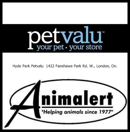 Animalert's Cat Adoption Event, Sunday, October 28, 2018 @ Hyde Park Petvalu