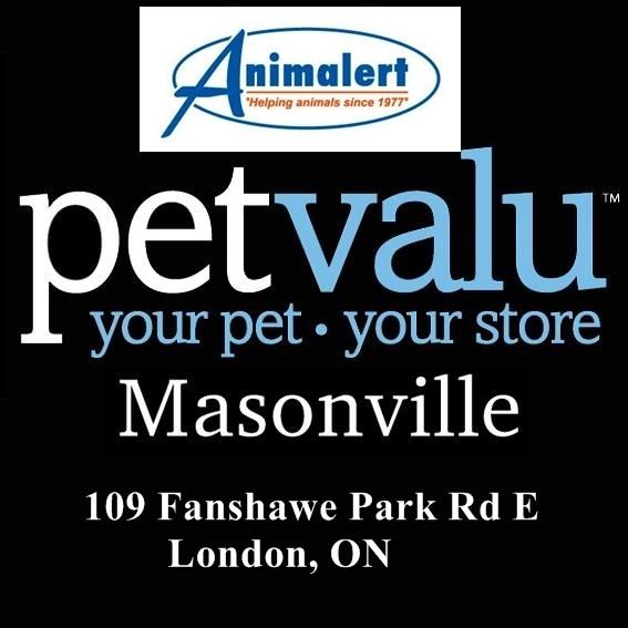 Animalert's Cat Adoption Event @ Masonville Petvalu, Saturday, March 23, 2019
