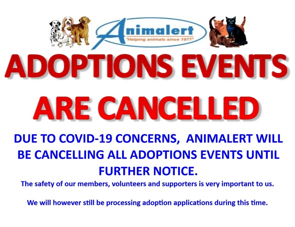 ADOPTION EVENTS ARE CANCELLED