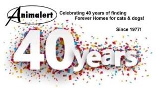 Celebrating 40 Years!